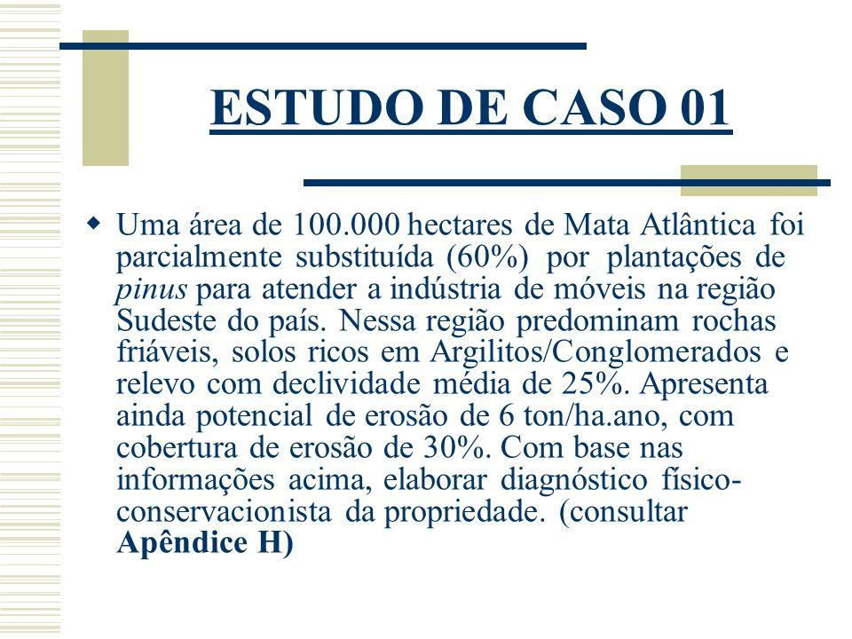 ESTUDO DE CASO 01