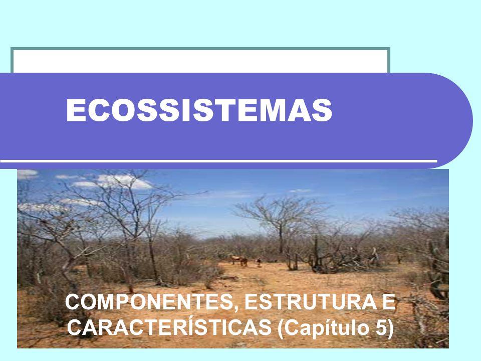 COMPONENTES, ESTRUTURA E CARACTERÍSTICAS (Capítulo 5)