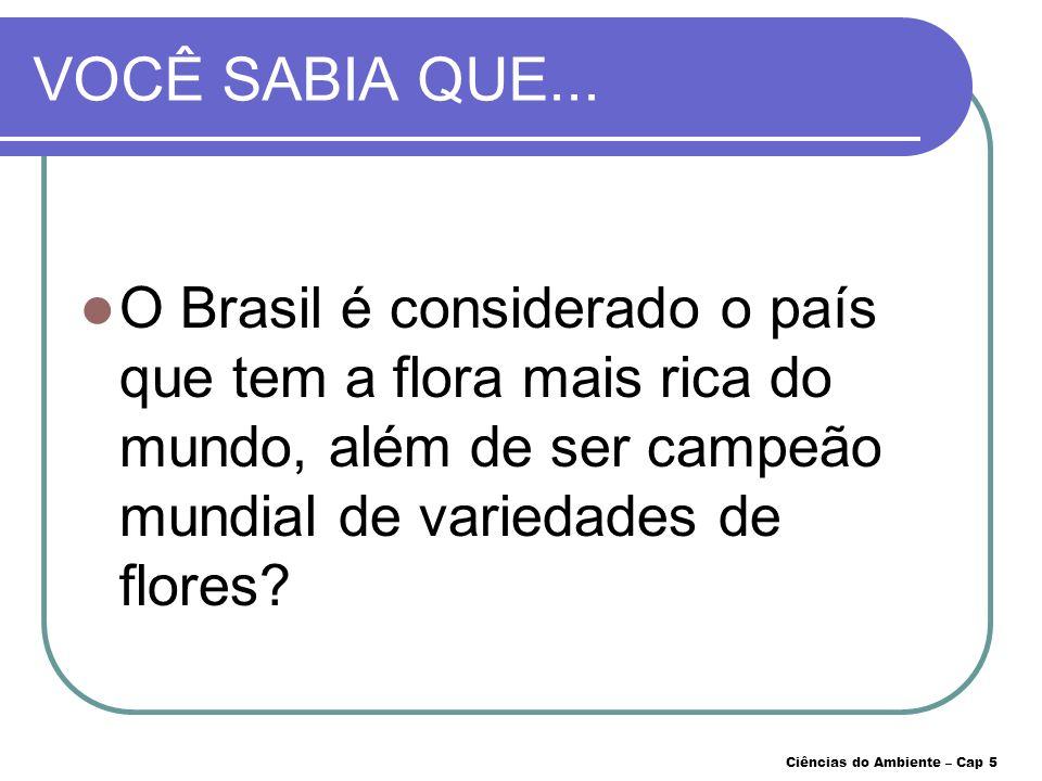 VOCÊ SABIA QUE... O Brasil é considerado o país que tem a flora mais rica do mundo, além de ser campeão mundial de variedades de flores