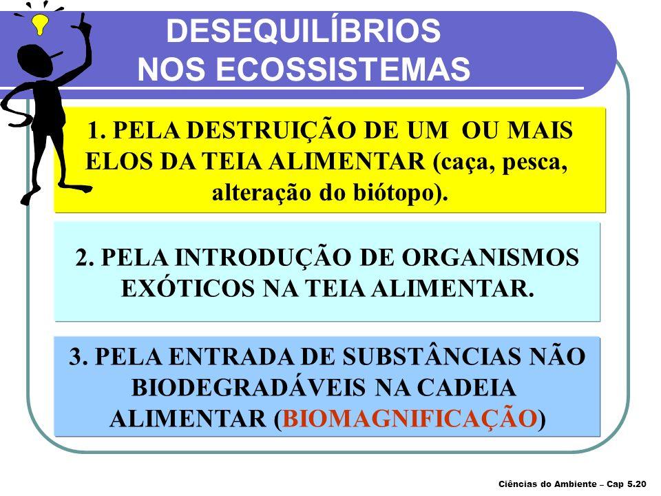 DESEQUILÍBRIOS NOS ECOSSISTEMAS