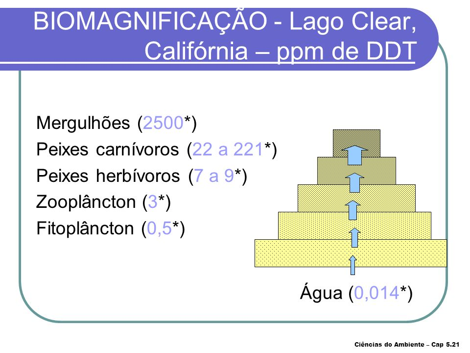 BIOMAGNIFICAÇÃO - Lago Clear, Califórnia – ppm de DDT