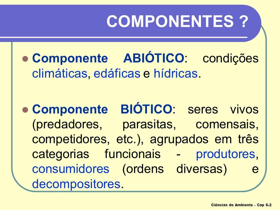 COMPONENTES Componente ABIÓTICO: condições climáticas, edáficas e hídricas.