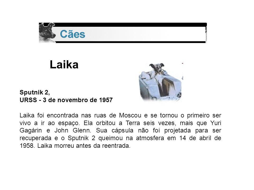 Laika Sputnik 2, URSS - 3 de novembro de 1957