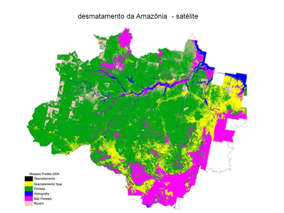 desmatamento da Amazônia - satélite