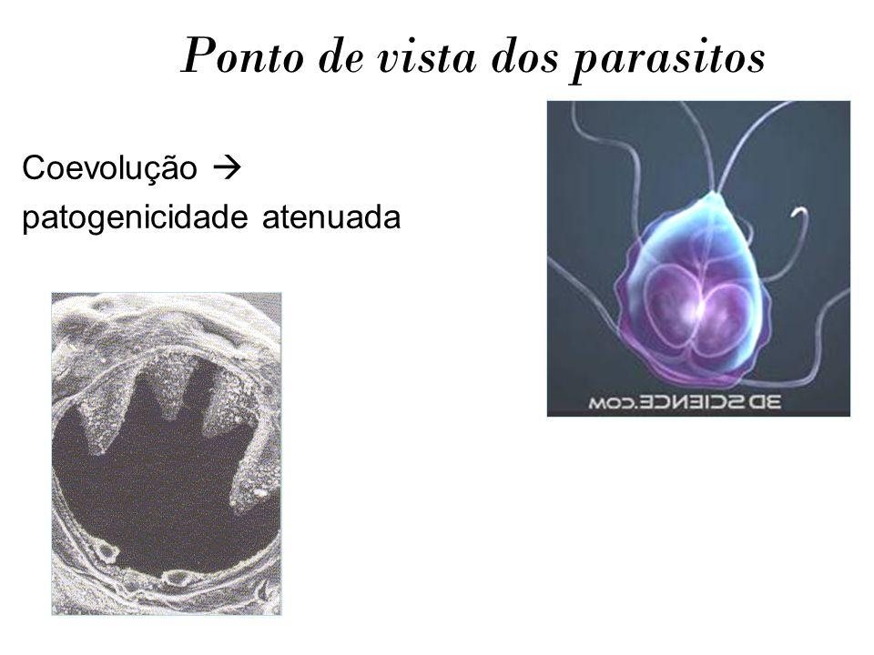Ponto de vista dos parasitos