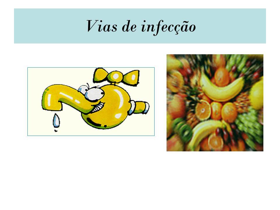 Vias de infecção