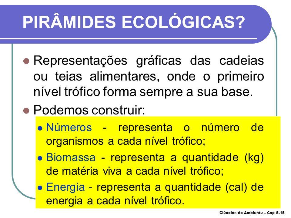 PIRÂMIDES ECOLÓGICAS Representações gráficas das cadeias ou teias alimentares, onde o primeiro nível trófico forma sempre a sua base.