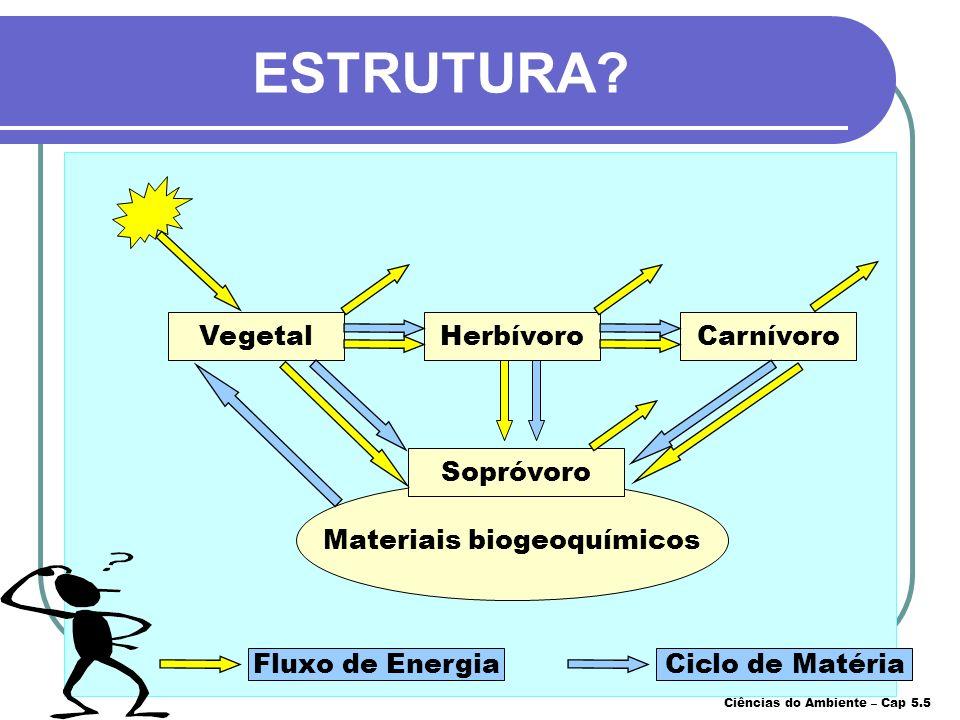 Materiais biogeoquímicos