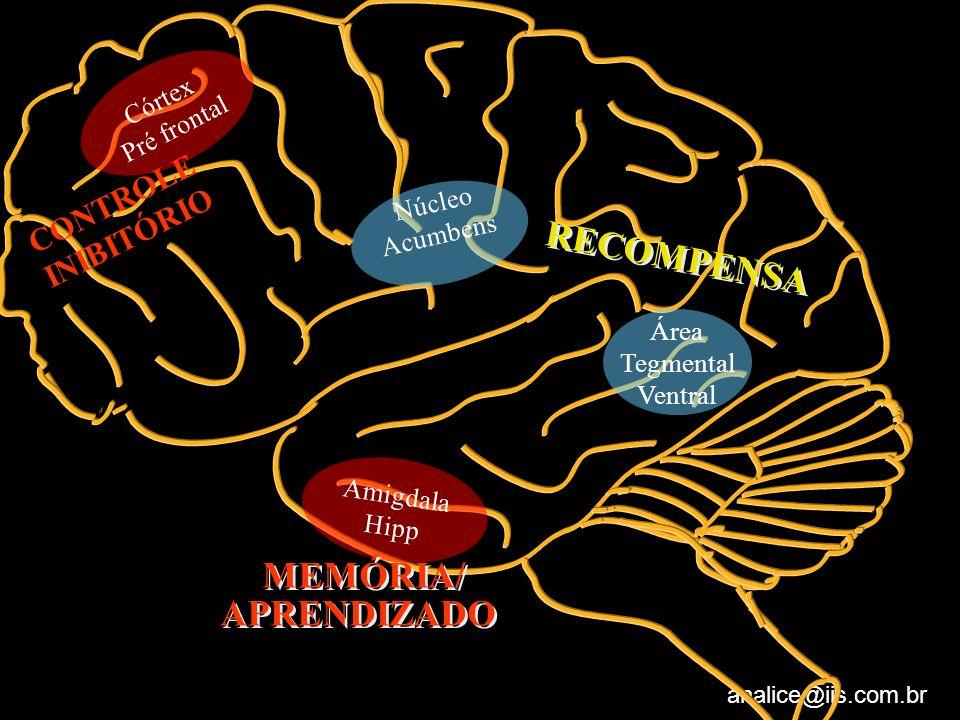 RECOMPENSA MEMÓRIA/ APRENDIZADO