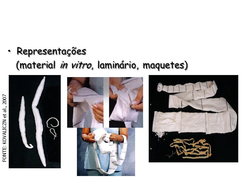(material in vitro, laminário, maquetes)