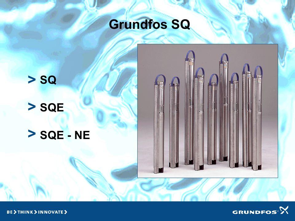 Grundfos SQ > SQ SQE SQE - NE > >