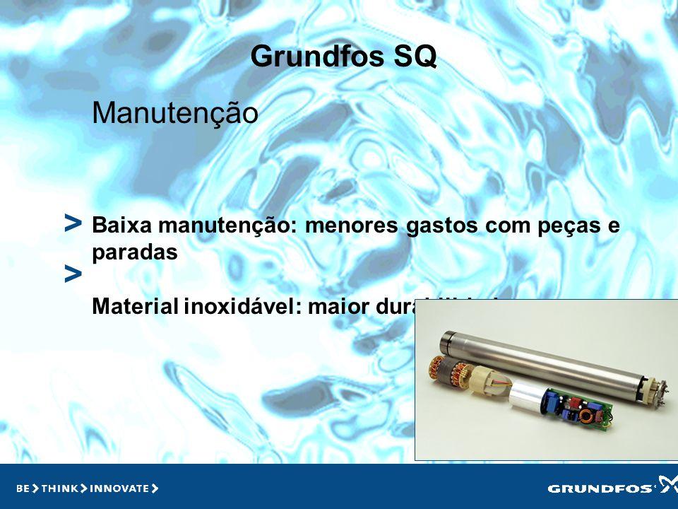 > > Grundfos SQ Manutenção