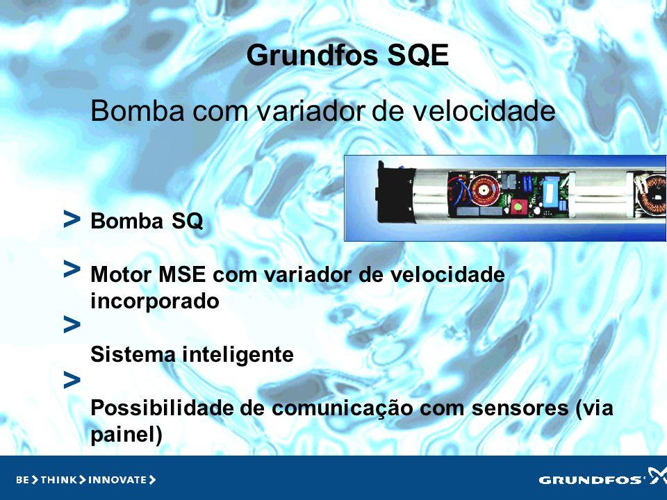 > > > > Grundfos SQE Bomba com variador de velocidade