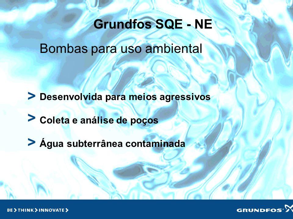 > > > Grundfos SQE - NE Bombas para uso ambiental