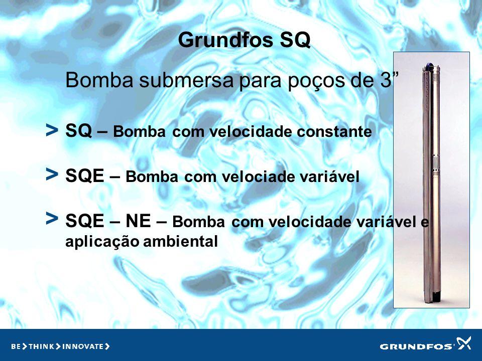 > > > Grundfos SQ Bomba submersa para poços de 3