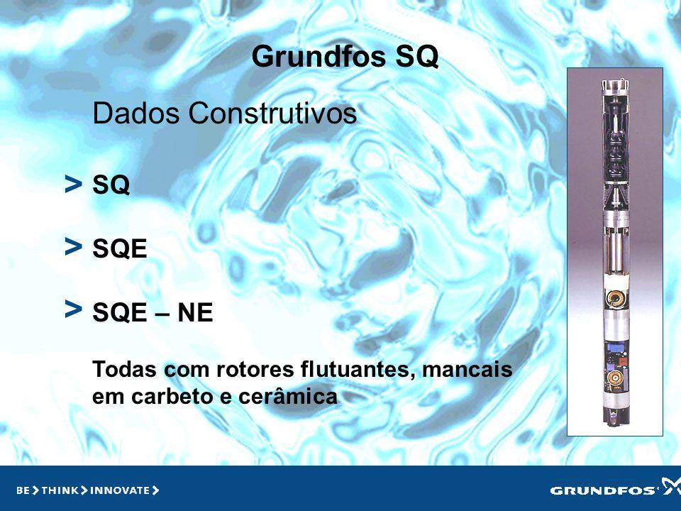 > > > Grundfos SQ Dados Construtivos SQ SQE SQE – NE