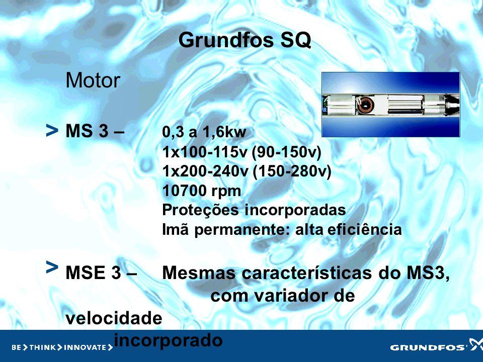 > > Grundfos SQ Motor MS 3 – 0,3 a 1,6kw