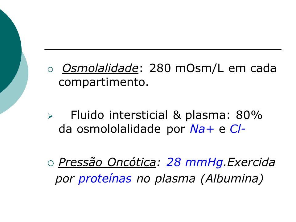 Fluido intersticial & plasma: 80% da osmololalidade por Na+ e Cl-