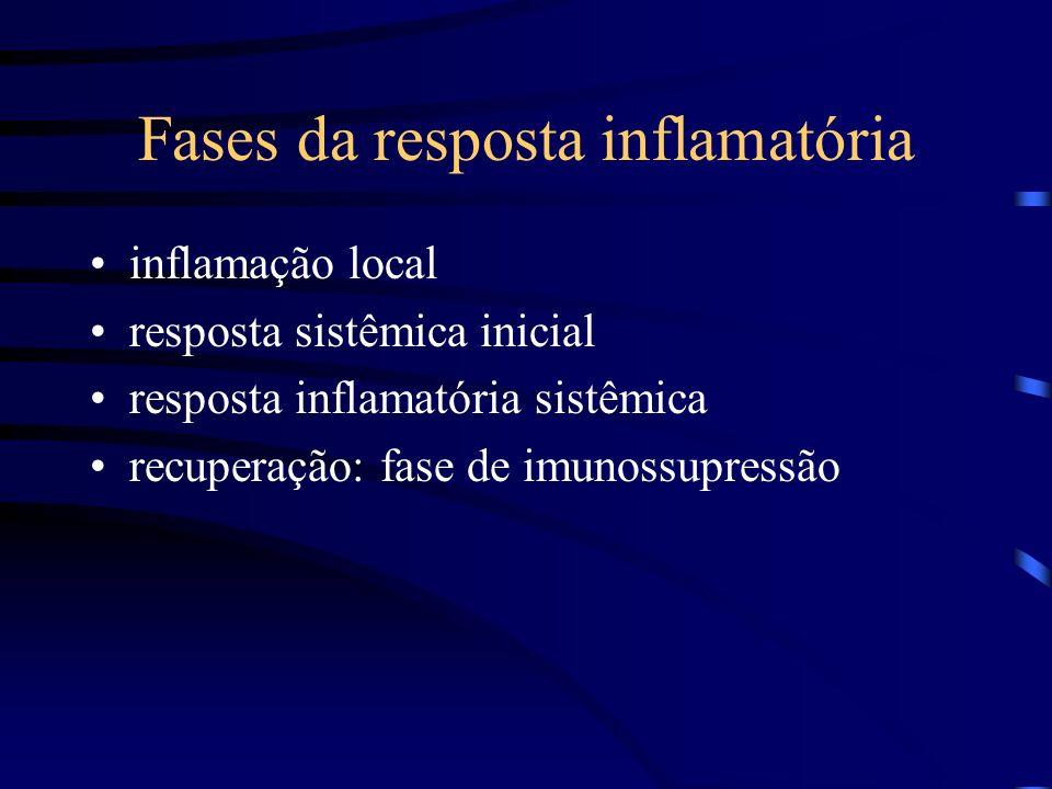Fases da resposta inflamatória