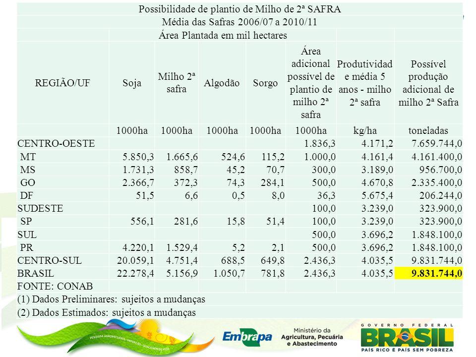 Possibilidade de plantio de Milho de 2ª SAFRA