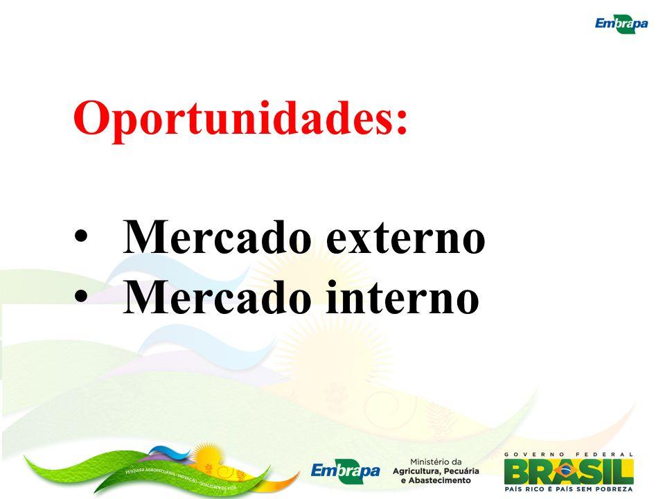 Oportunidades: Mercado externo Mercado interno