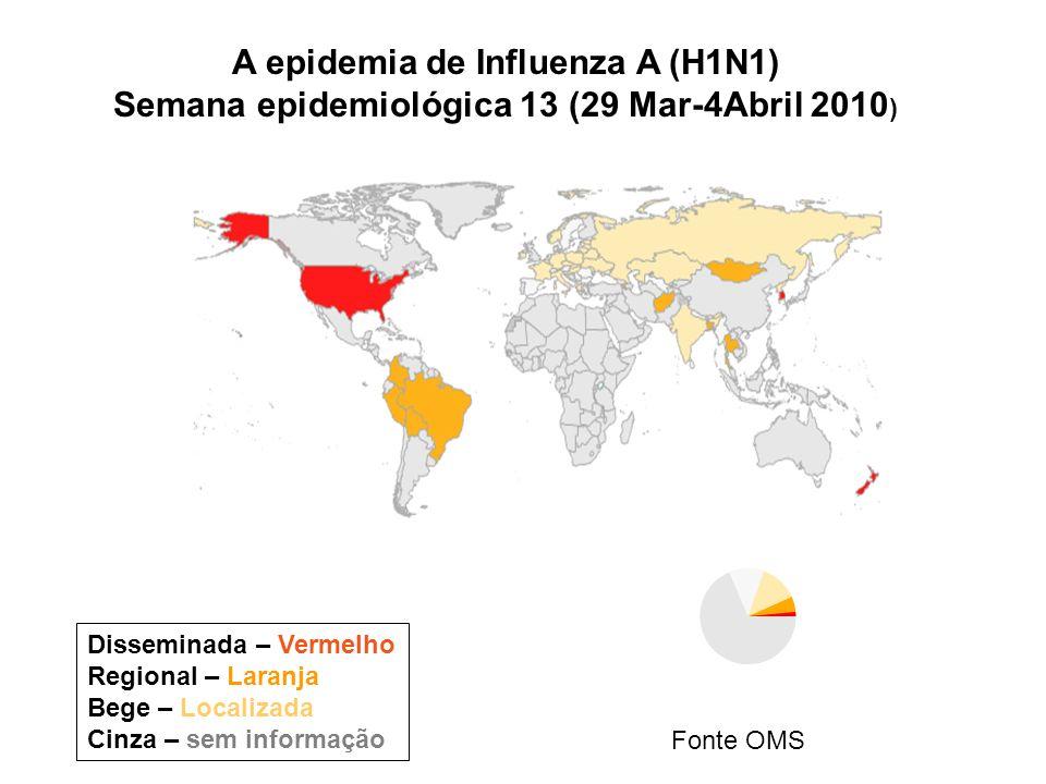 A epidemia de Influenza A (H1N1)