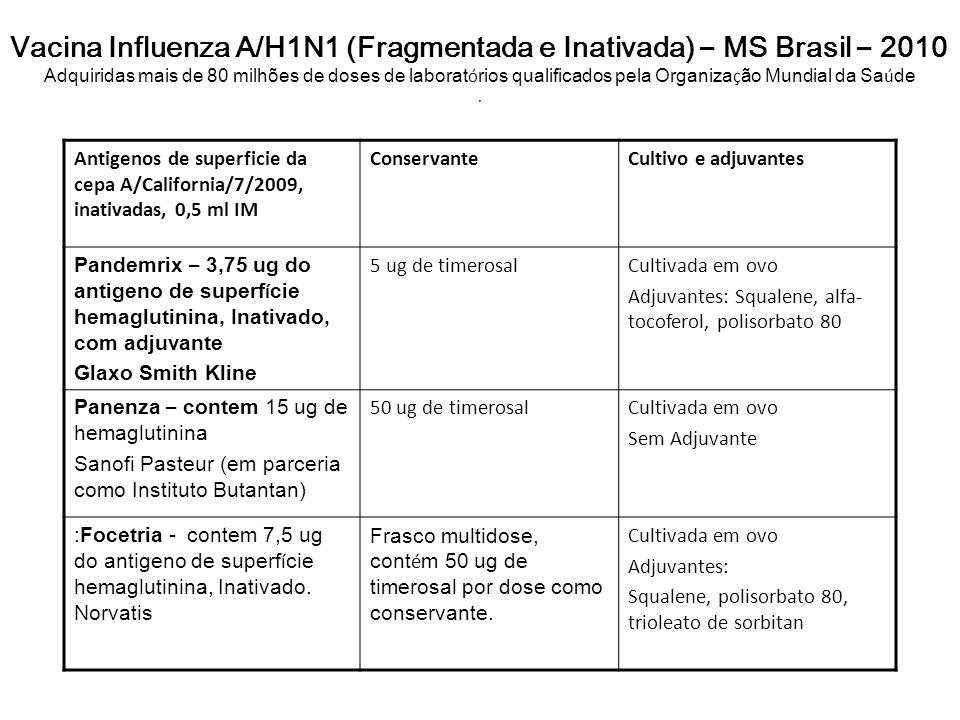 Vacina Influenza A/H1N1 (Fragmentada e Inativada) – MS Brasil – 2010