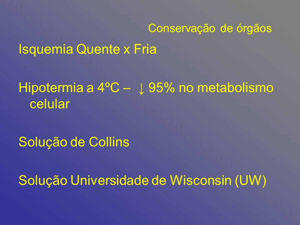 Hipotermia a 4ºC – ↓ 95% no metabolismo celular