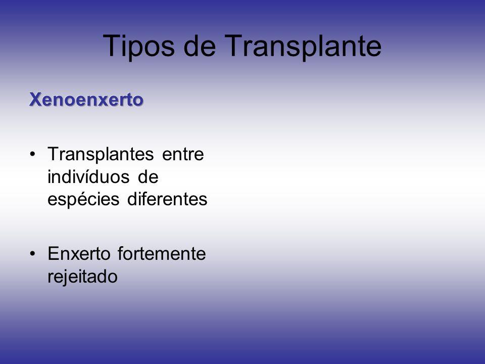 Tipos de Transplante Xenoenxerto