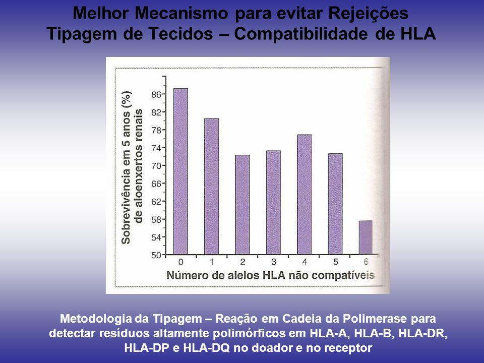 Melhor Mecanismo para evitar Rejeições Tipagem de Tecidos – Compatibilidade de HLA