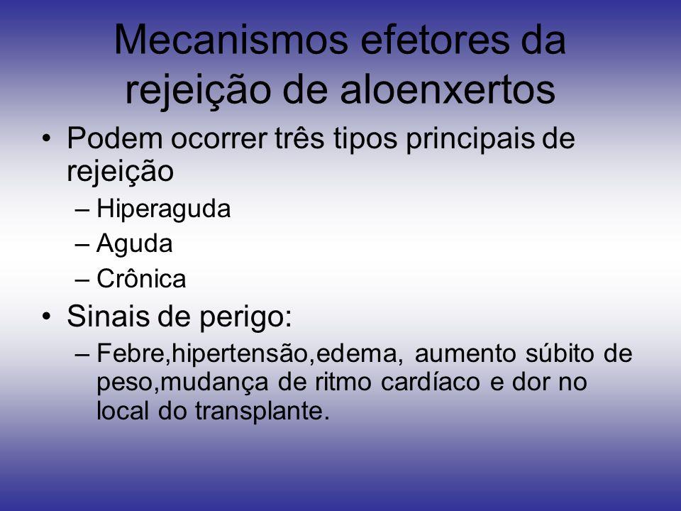 Mecanismos efetores da rejeição de aloenxertos