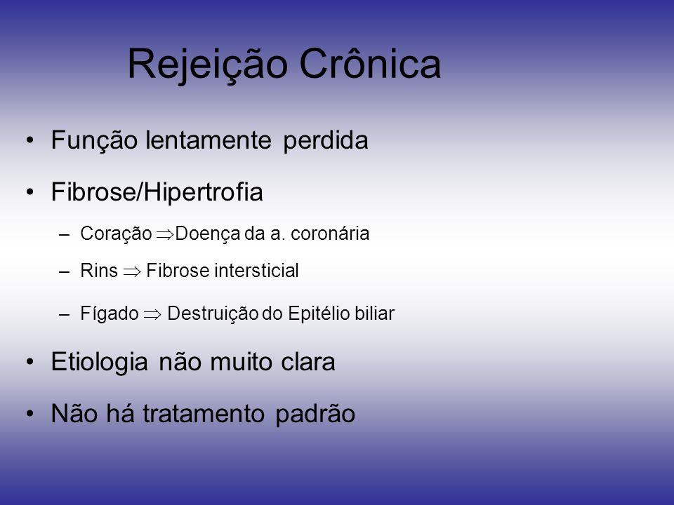Rejeição Crônica Função lentamente perdida Fibrose/Hipertrofia