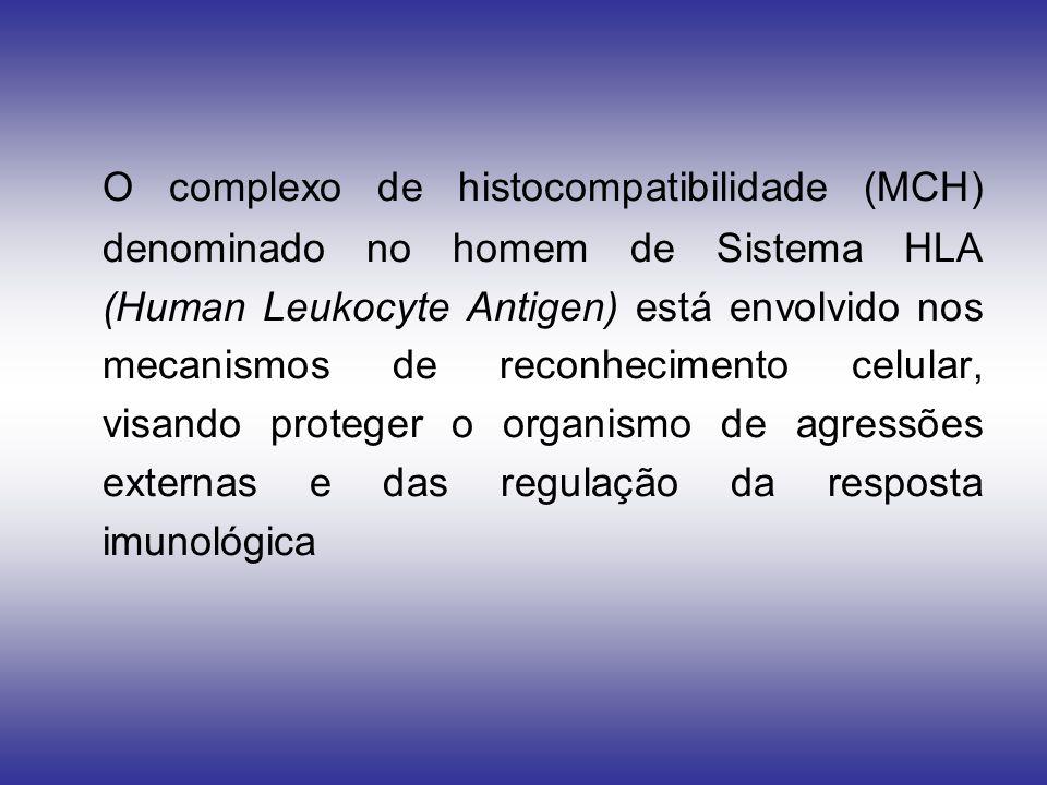 O complexo de histocompatibilidade (MCH) denominado no homem de Sistema HLA (Human Leukocyte Antigen) está envolvido nos mecanismos de reconhecimento celular, visando proteger o organismo de agressões externas e das regulação da resposta imunológica