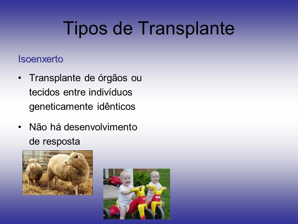 Tipos de Transplante Isoenxerto