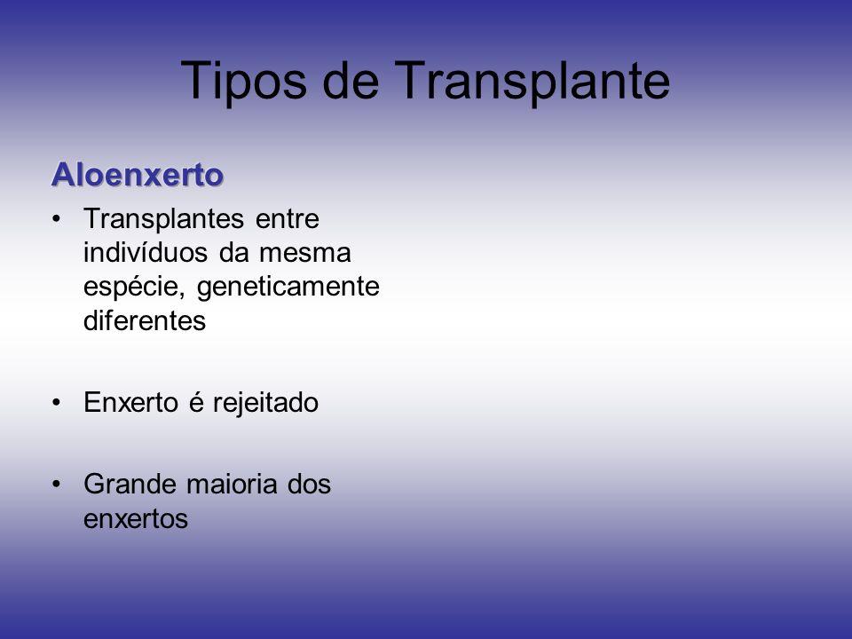 Tipos de Transplante Aloenxerto