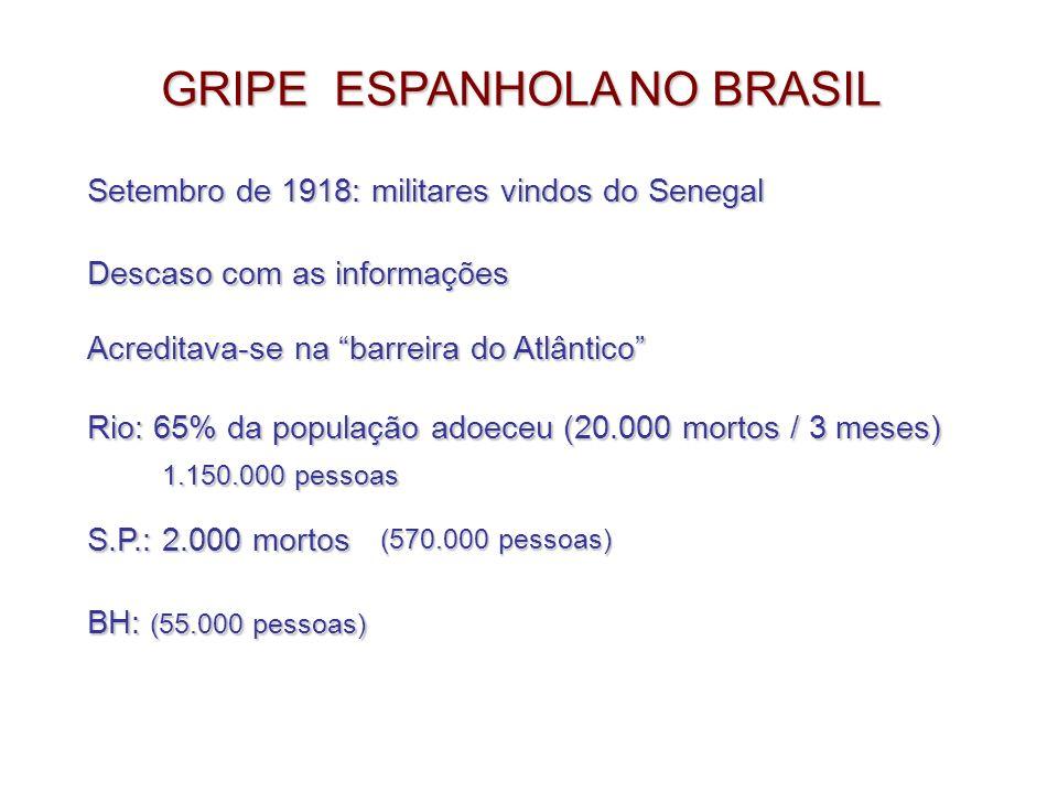 GRIPE ESPANHOLA NO BRASIL