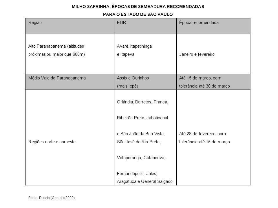 MILHO SAFRINHA: ÉPOCAS DE SEMEADURA RECOMENDADAS