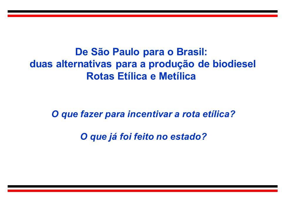 De São Paulo para o Brasil: duas alternativas para a produção de biodiesel Rotas Etílica e Metílica