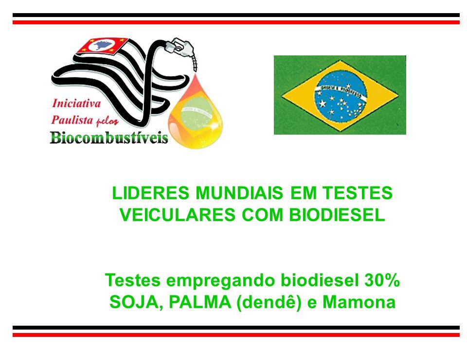 LIDERES MUNDIAIS EM TESTES VEICULARES COM BIODIESEL