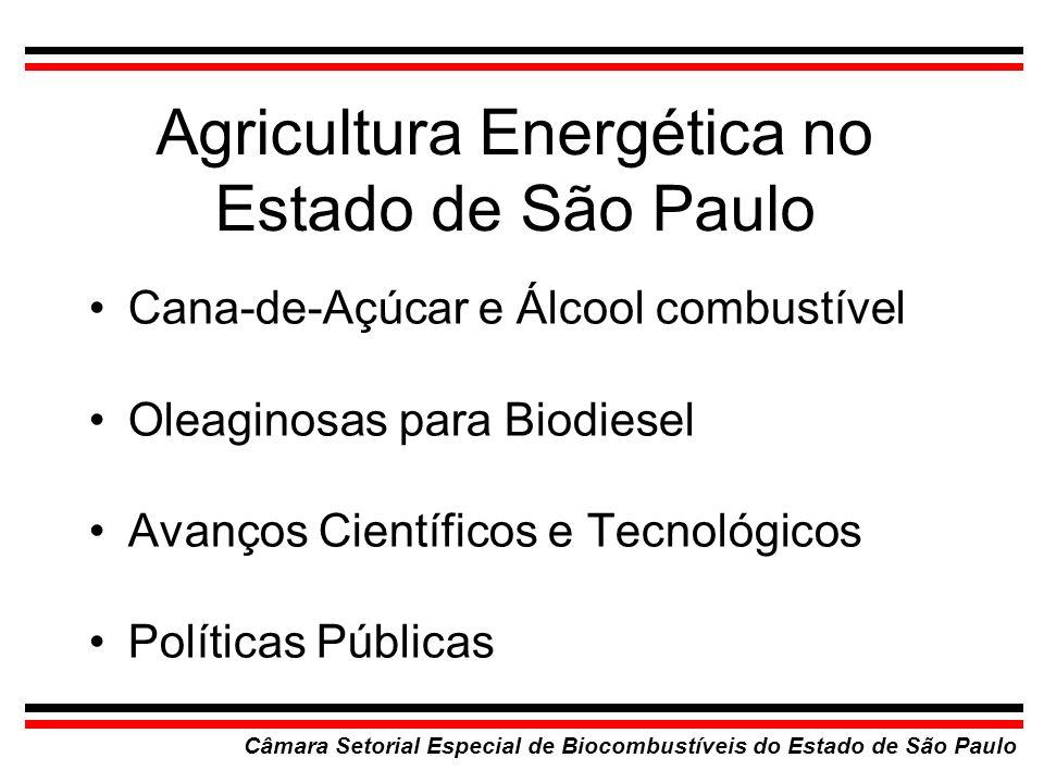 Agricultura Energética no Estado de São Paulo