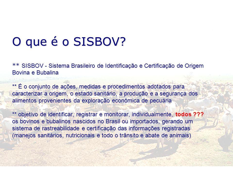 O que é o SISBOV.