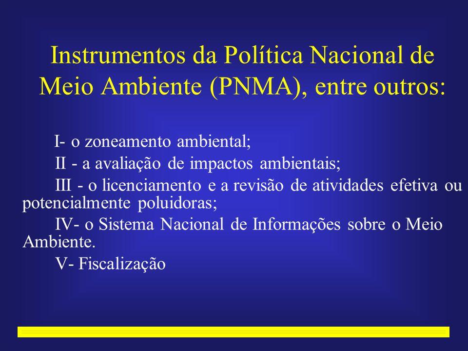 Instrumentos da Política Nacional de Meio Ambiente (PNMA), entre outros: