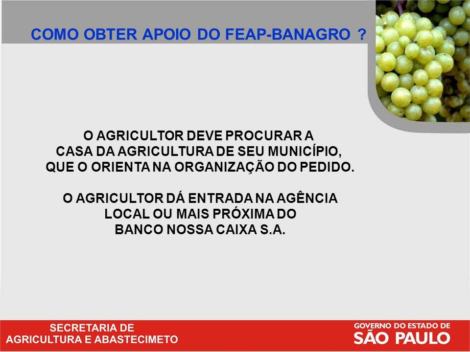 COMO OBTER APOIO DO FEAP-BANAGRO
