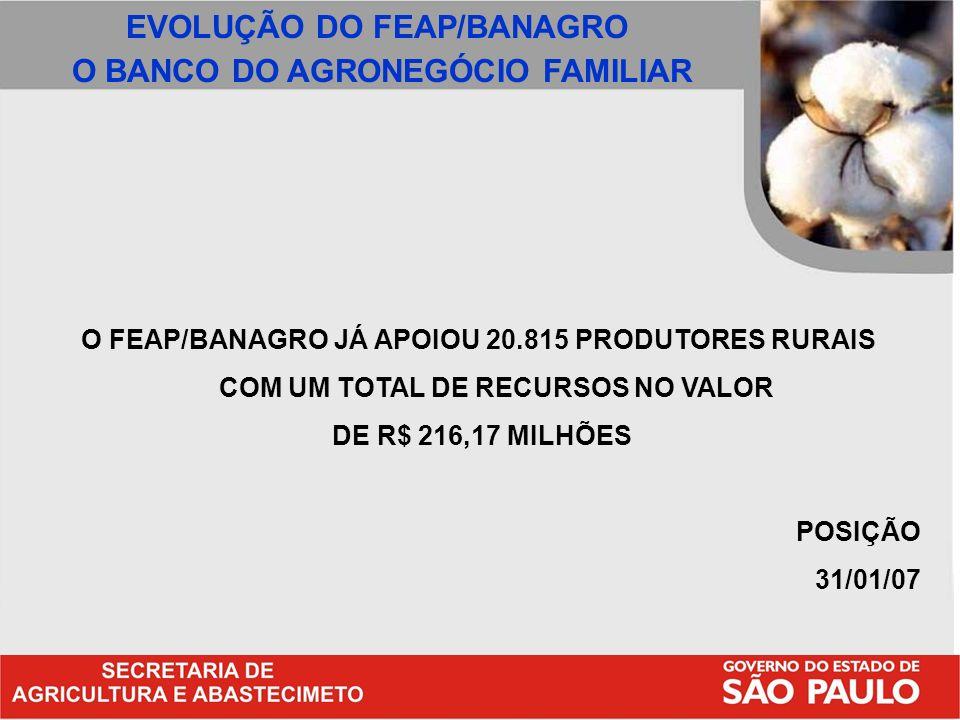 EVOLUÇÃO DO FEAP/BANAGRO O BANCO DO AGRONEGÓCIO FAMILIAR
