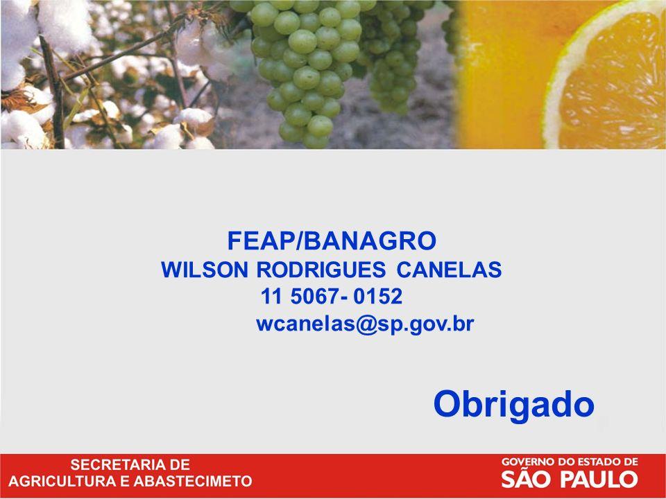 FEAP/BANAGRO WILSON RODRIGUES CANELAS 11 5067- 0152 wcanelas@sp.gov.br