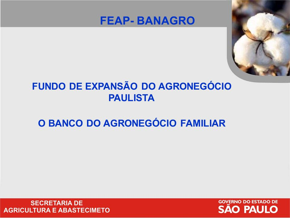 O BANCO DO AGRONEGÓCIO FAMILIAR