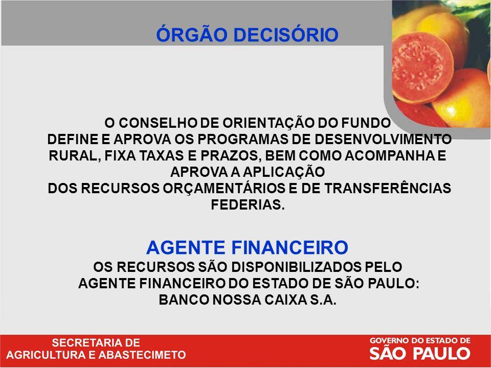 ÓRGÃO DECISÓRIO AGENTE FINANCEIRO O CONSELHO DE ORIENTAÇÃO DO FUNDO