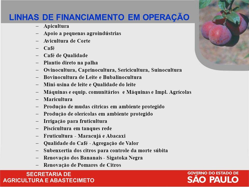 LINHAS DE FINANCIAMENTO EM OPERAÇÃO