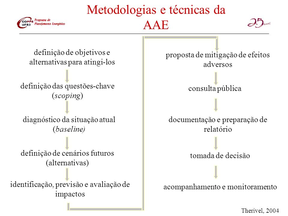 Metodologias e técnicas da AAE