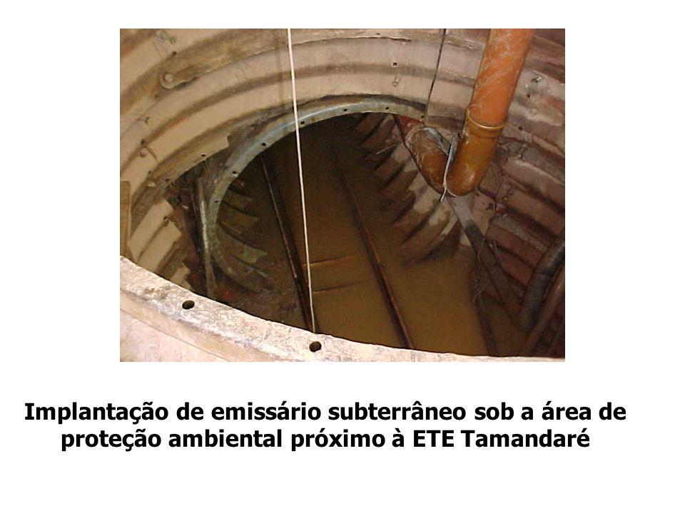 Implantação de emissário subterrâneo sob a área de proteção ambiental próximo à ETE Tamandaré